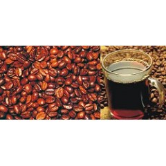 Synergy Flavors Premium Central American Blend BIB 2-1/2 Gallons